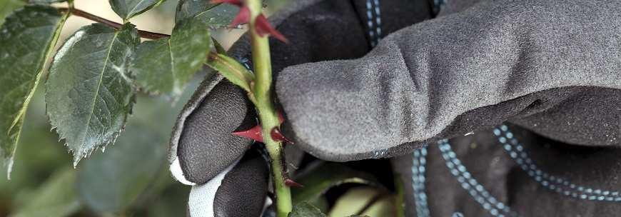 Перчатки для работ с кустарниками