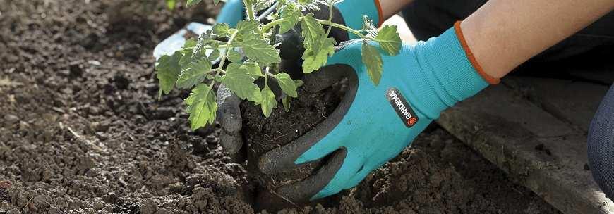 Перчатки для работ с почвой