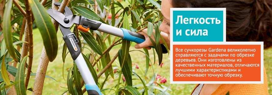 Садовые сучкорезы