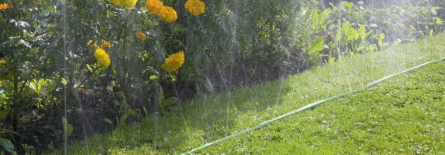 Шланги-дощувачі